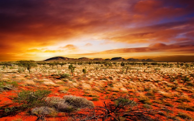 Finding Peace in Your Desert